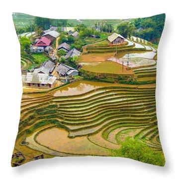 Beautiful Rice Fields, Vietnam Throw Pillow
