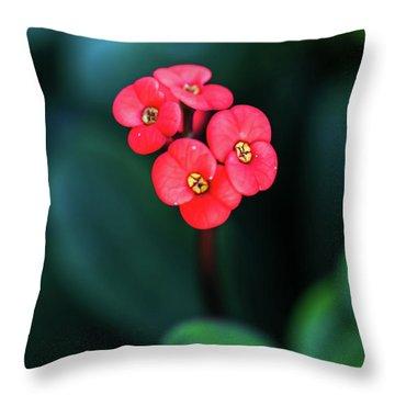 Beautiful Summer Flowers Throw Pillow