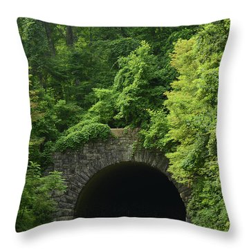Beautiful Tunnel With Greenery, Nc Throw Pillow