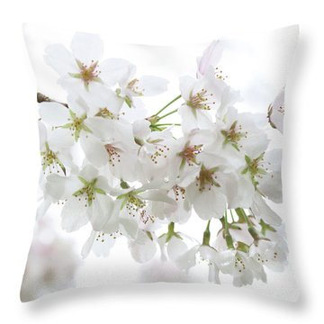 Beautiful White Cherry Blossoms Throw Pillow