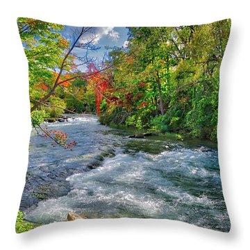 Throw Pillow featuring the photograph Beauty Before The Falls by Lynn Bauer