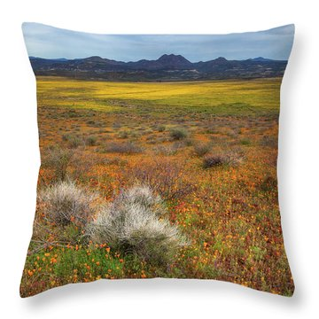 Beauty But For A Moment Throw Pillow
