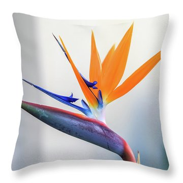 Beauty In Paradise Throw Pillow