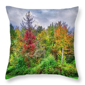 Throw Pillow featuring the photograph Beauty In The Fall Forest by Lynn Bauer