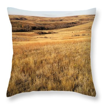 Throw Pillow featuring the photograph Beauty On The High Plains by Carl Young