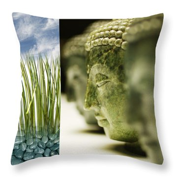 Throw Pillow featuring the photograph Becoming II by Mark Shoolery