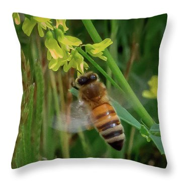 Throw Pillow featuring the photograph Bee And Flower by Lora J Wilson