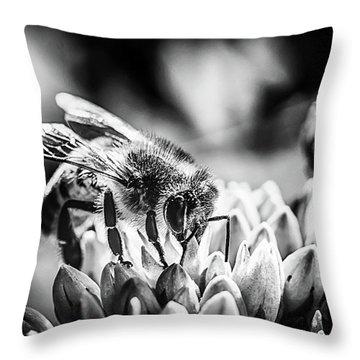 Bee Bee Throw Pillow