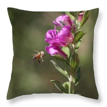 Bee Flying Towards Ultra Violet Texas Ranger Flower Throw Pillow