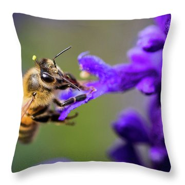 Bee On A Purple Flower Throw Pillow