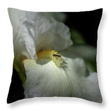 Bee Yond The Blossom Throw Pillow