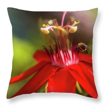 Beeline Movement Throw Pillow