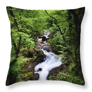 Bela River, Balkan Mountain Throw Pillow