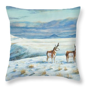 Belt Butte Winter Throw Pillow