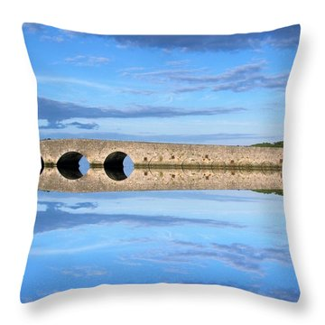 Belvelly Castle Reflection Throw Pillow