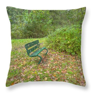 Bench Overlooking Pine Quarry Throw Pillow