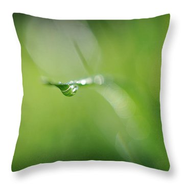 Throw Pillow featuring the photograph Beneath by Michelle Wermuth