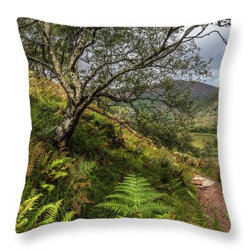 Beneath The Ben Nevis Mountain Throw Pillow