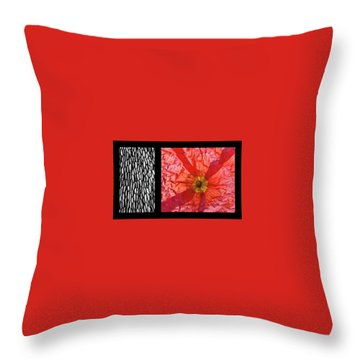 Throw Pillow featuring the photograph Bento Box 1 by Mark Shoolery