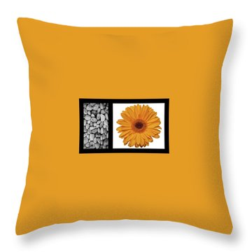 Throw Pillow featuring the photograph Bento Box 2 by Mark Shoolery