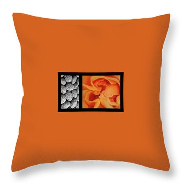 Throw Pillow featuring the photograph Bento Box 4 by Mark Shoolery