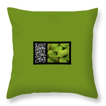 Throw Pillow featuring the photograph Bento Box 6 by Mark Shoolery