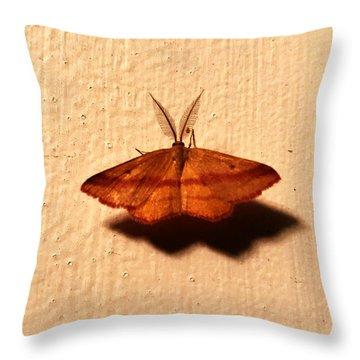 Bertrand Throw Pillow