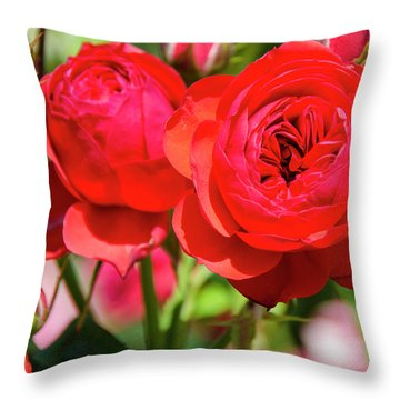 Best Buds In Red Throw Pillow