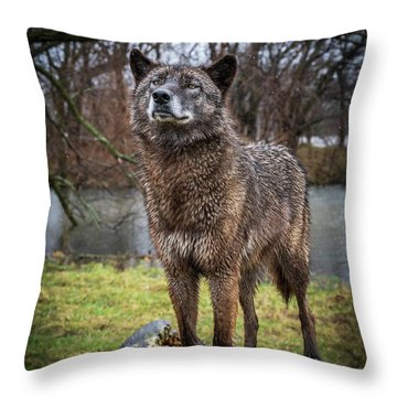 Best Of Show Pose Throw Pillow