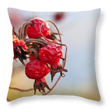 Between Summer And Winter Throw Pillow