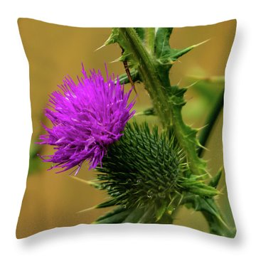 Between The Flower And The Thorn Throw Pillow
