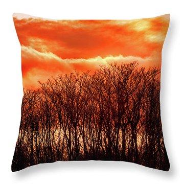Bhrp Sunset Throw Pillow