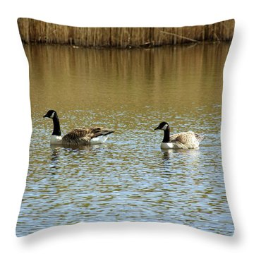 Bidston.  Bidston Moss Wildlife Reserve. Two Geese. Throw Pillow