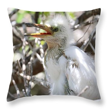 Big Baby Great Egret Throw Pillow