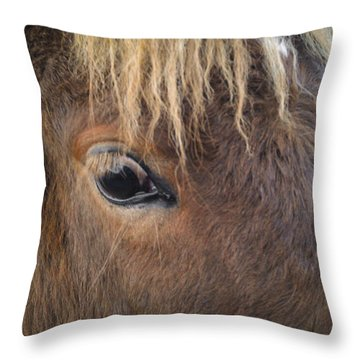Throw Pillow featuring the photograph Big Eyes by Carl Young