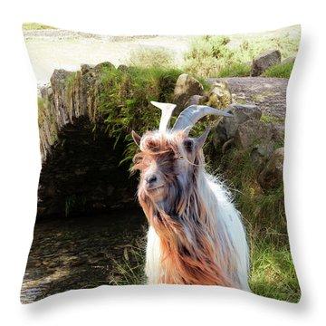 Billy Goat Throw Pillows Fine Art America