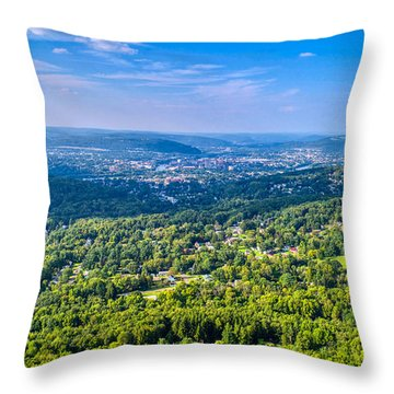 Binghamton Aerial View Throw Pillow