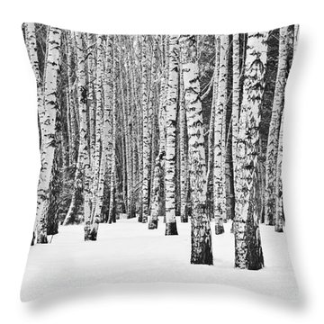 Beauty Of Nature Throw Pillows