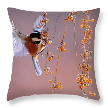 Throw Pillow featuring the photograph Bird Eating On The Fly by Top Wallpapers