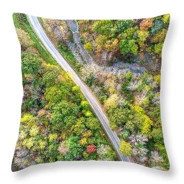 Bird Eye View Throw Pillow