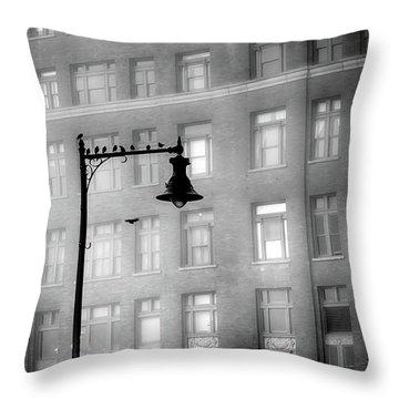 Bird Lamp Throw Pillow