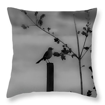 Bird On A Post Throw Pillow