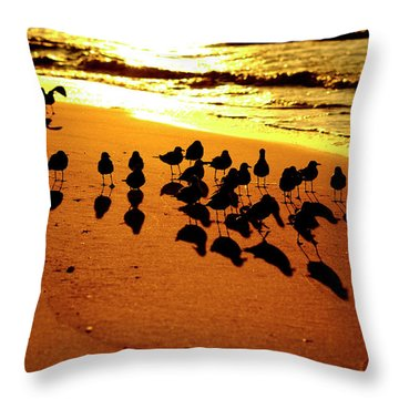 Bird Shadows Throw Pillow