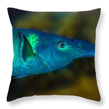 Bird Wrasse Throw Pillow