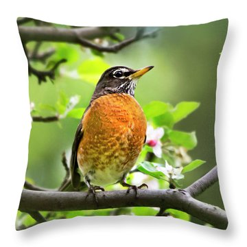 Birds - American Robin - Nature's Alarm Clock Throw Pillow