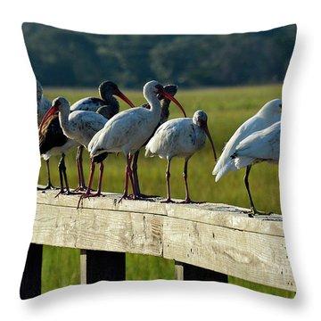 Birds Of A Feather On Jekyll Island Throw Pillow