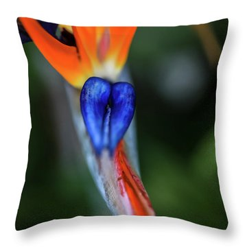 Birds Of Paradise Up Close Throw Pillow