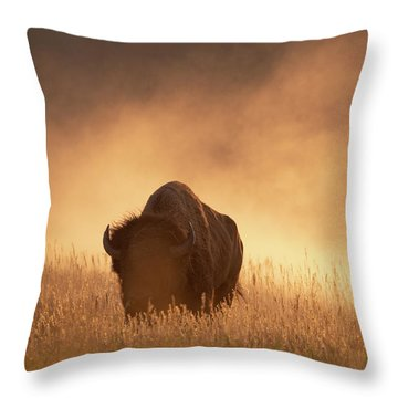 Bison In The Dust 2 Throw Pillow