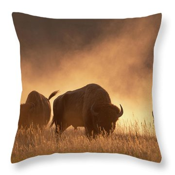 Bison In The Dust Throw Pillow