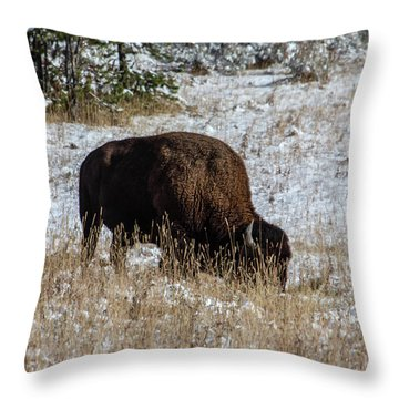 Throw Pillow featuring the photograph Bison In The Snow by Pete Federico